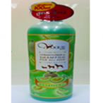 Shampoo (Cantaloug Green) 400 ML.